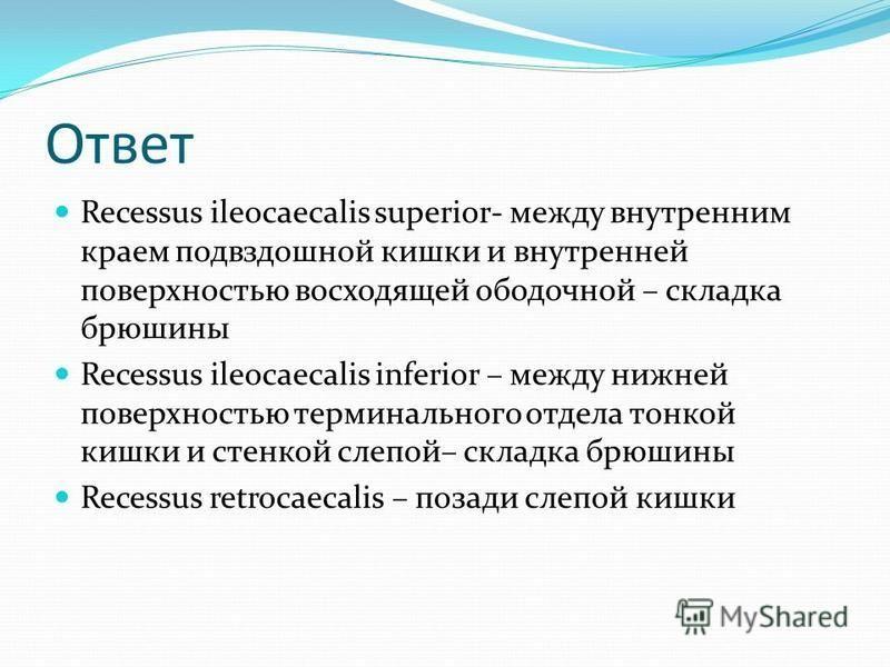 Ответ Recessus ileocaecalis superior- между внутренним краем подвздошной кишки и внутренней поверхностью восходящей ободочной – складка брюшины Recessus ileocaecalis inferior – между нижней поверхностью терминального отдела тонкой кишки и стенкой сле
