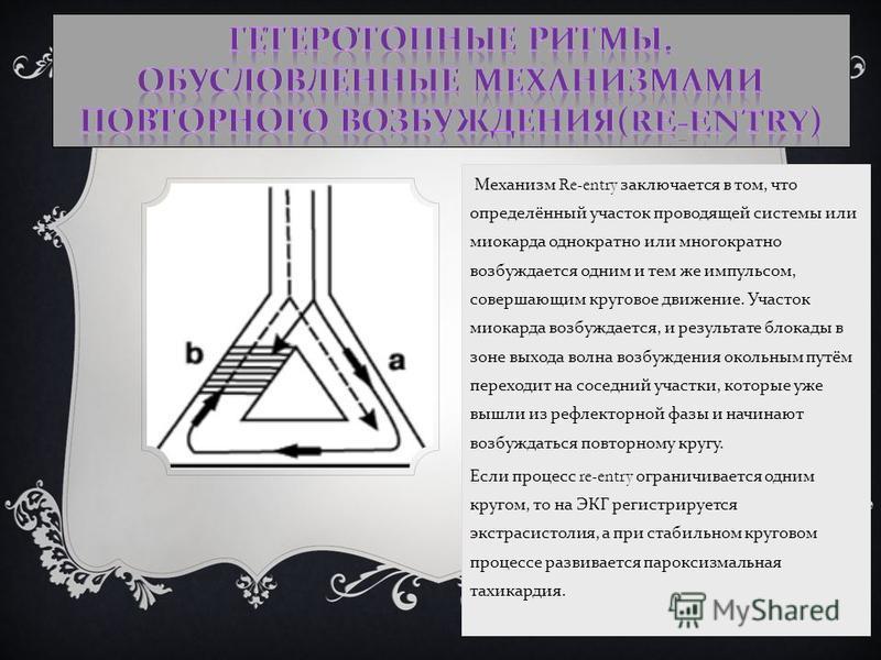 Механизм Re-entry заключается в том, что определённый участок проводящей системы или миокарда однократно или мнегократно возбуждается одним и тем же импульсом, совершающим круговое движение. Участок миокарда возбуждается, и результате блокады в зоне
