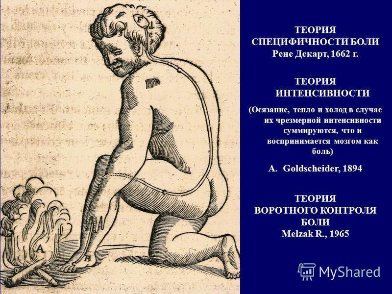 ТЕОРИЯ СПЕЦИФИЧНОСТИ БОЛИ Рене Декарт, 1662 г. ТЕОРИЯ ИНТЕНСИВНОСТИ (Осязание, тепло и холод в случае их чрезмерной интенсивности суммируются, что и воспринимается мозгом как боль) A.Goldscheider, 1894 ТЕОРИЯ ВОРОТНОГО КОНТРОЛЯ БОЛИ Melzak R., 1965