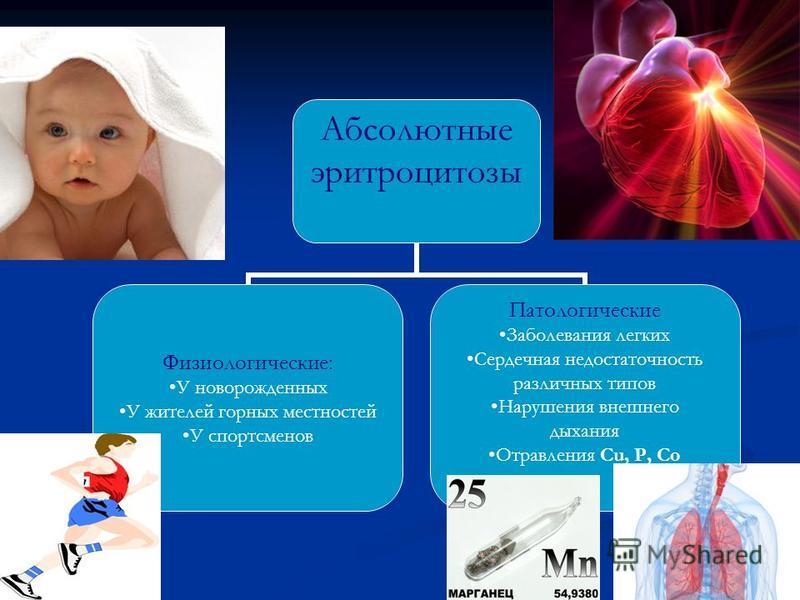 Абсолютные эритроцитозы Физиологические: У новорожденных У жителей горных местностей У спортсменов Патологические Заболевания легких Сердечная недостаточность различных типов Нарушения внешнего дыхания Отравления Cu, P, Co
