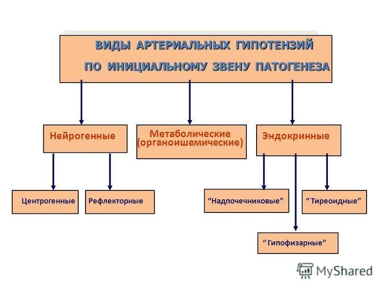 ВИДЫ АРТЕРИАЛЬНЫХ ГИПОТЕНЗИЙ ПО ИНИЦИАЛЬНОМУ ЗВЕНУ ПАТОГЕНЕЗА Нейрогенные Метаболические (органоишемические) Эндокринные Рефлекторные Центрогенные Тиреоидные Надпочечниковые Гипофизарные