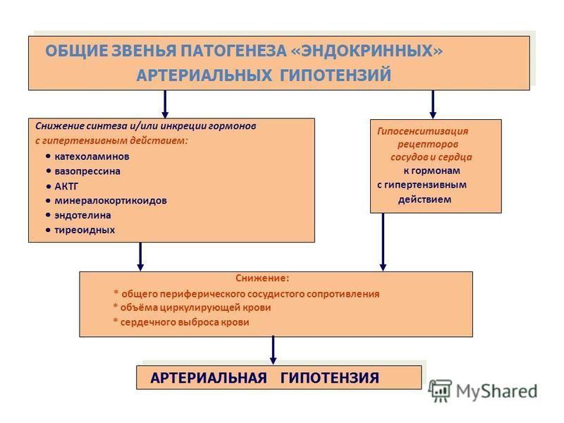 Снижение синтеза и/или инкреции гормонов с гипертензивным действием: ОБЩИЕ ЗВЕНЬЯ ПАТОГЕНЕЗА «ЭНДОКРИННЫХ» АРТЕРИАЛЬНЫХ ГИПОТЕНЗИЙ катехоламинов вазопрессина АКТГ минералокортикоидов эндотелина тиреоидных Снижение: * общего периферического сосудистог