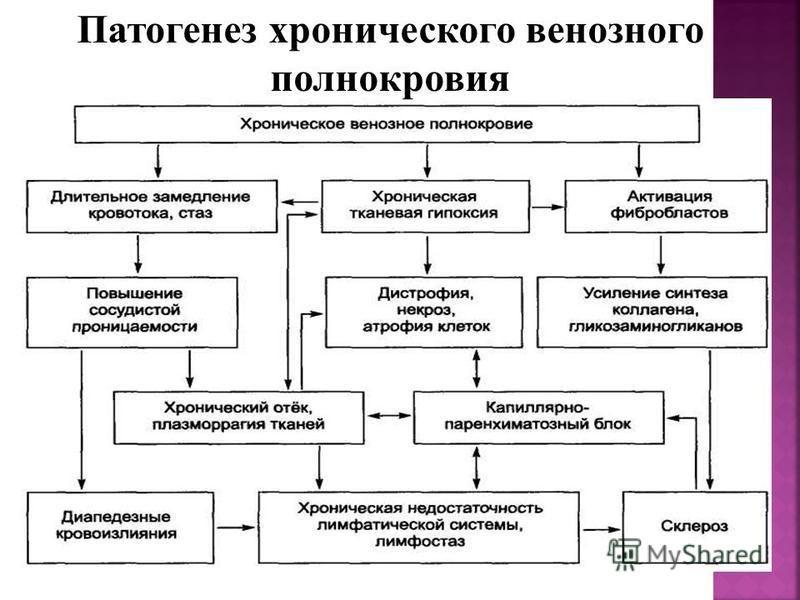 Патогенез хронического венозного полнокровия