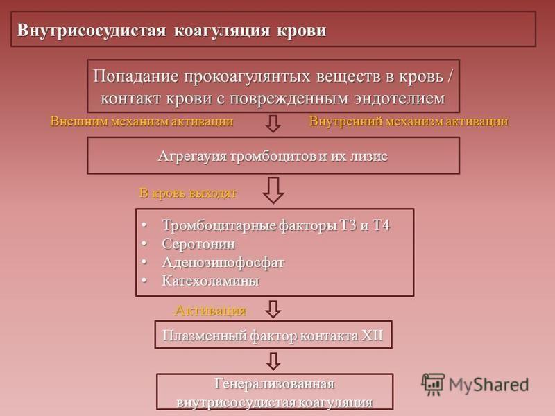 Внутрисосудистая коагуляция крови Попадание прокоагулянтых веществ в кровь / контакт крови с поврежденным эндотелием Агрегауия тромбоцитов и их лизис Тромбоцитарные факторы Т3 и Т4 Тромбоцитарные факторы Т3 и Т4 Серотонин Серотонин Аденозинофосфат Ад