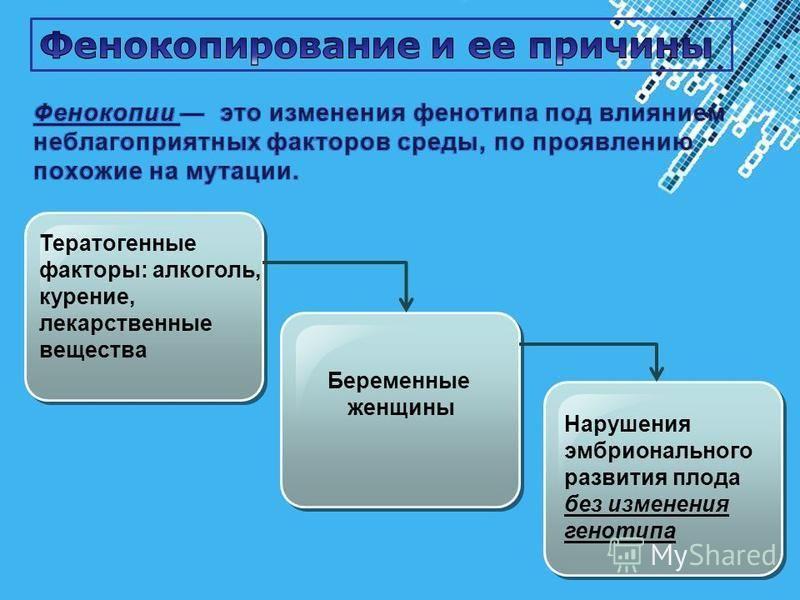 Powerpoint Templates Page 16 Тератогенные факторы: алкоголь, курение, лекарственные вещества Беременные женщины Нарушения эмбрионального развития плода без изменения генотипа
