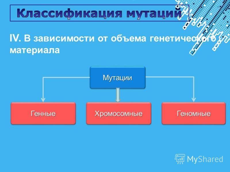Powerpoint Templates Page 23 IV. В зависимости от объема генетического материала Мутации Мутации Генные Генные ХромосомныеХромосомные ГеномныеГеномные