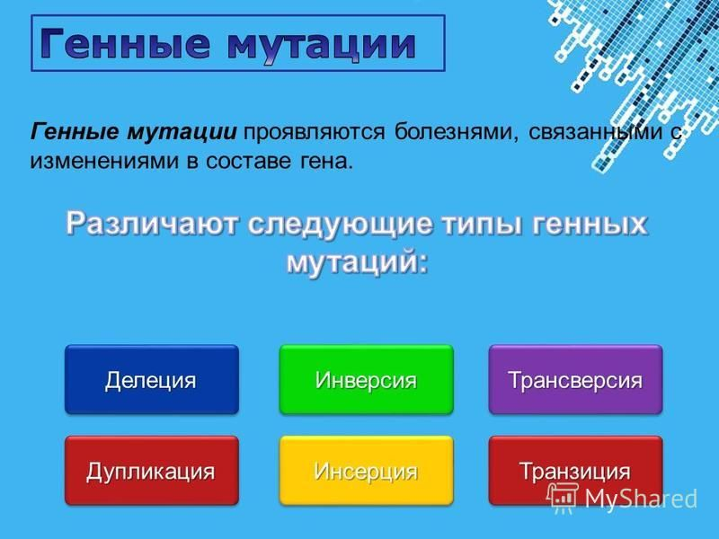 Powerpoint Templates Page 24 Делеция Делеция Дупликация Дупликация Инверсия Инверсия Инсерция Инсерция Трансверсия Трансверсия Транзиция Транзиция