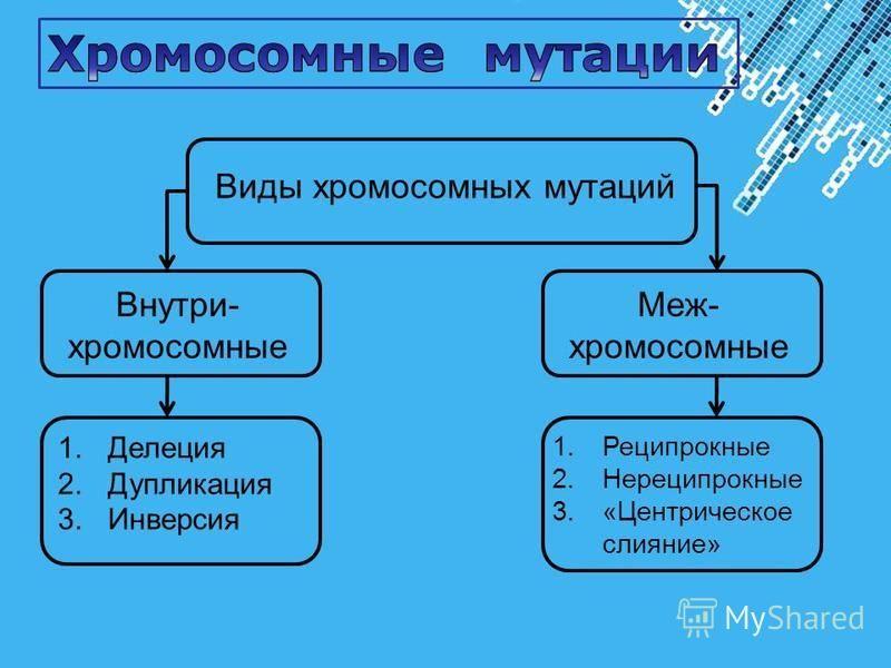 Powerpoint Templates Page 27 Виды хромосомных мутаций Внутри- хромосомные Меж- хромосомные 1. Делеция 2. Дупликация 3. Инверсия 1. Реципрокные 2. Нереципрокные 3.«Центрическое слияние»