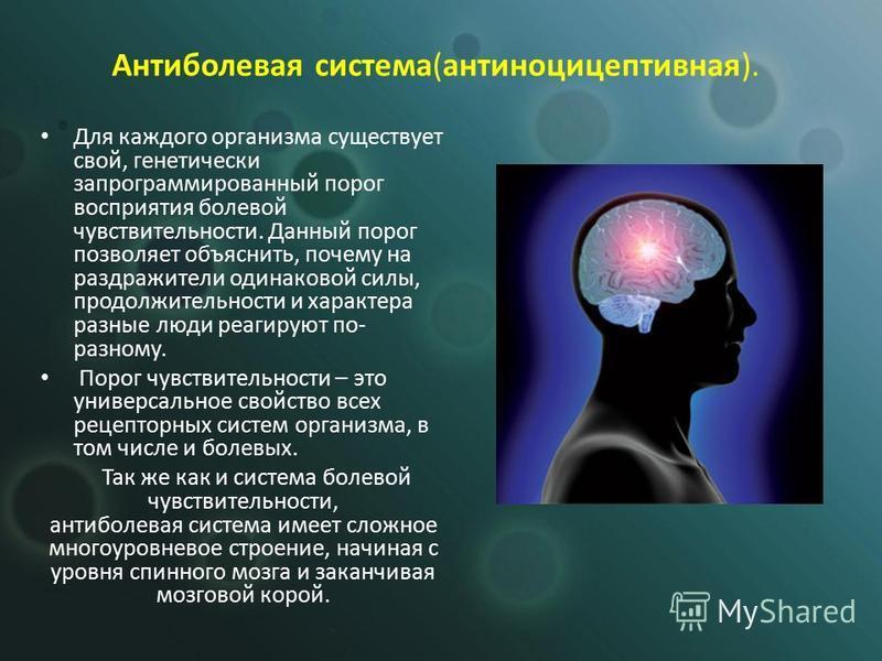 Для каждого организма существует свой, генетически запрограммированный порог восприятия болевой чувствительности. Данный порог позволяет объяснить, почему на раздражители одинаковой силы, продолжительности и характера разные люди реагируют по- разном
