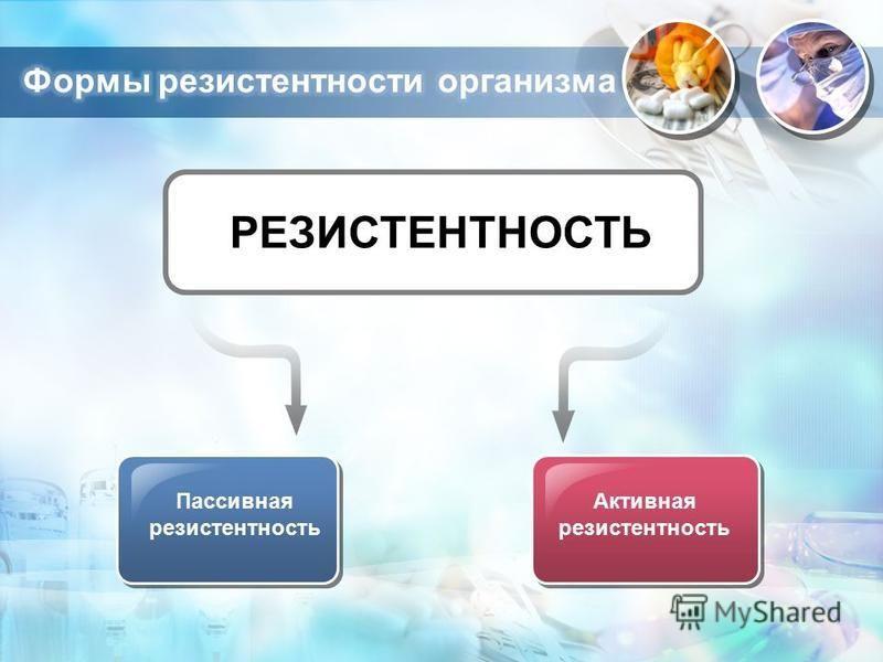 Пассивная резистентность Активная резистентность РЕЗИСТЕНТНОСТЬ