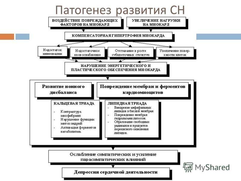Патогенез развития СН
