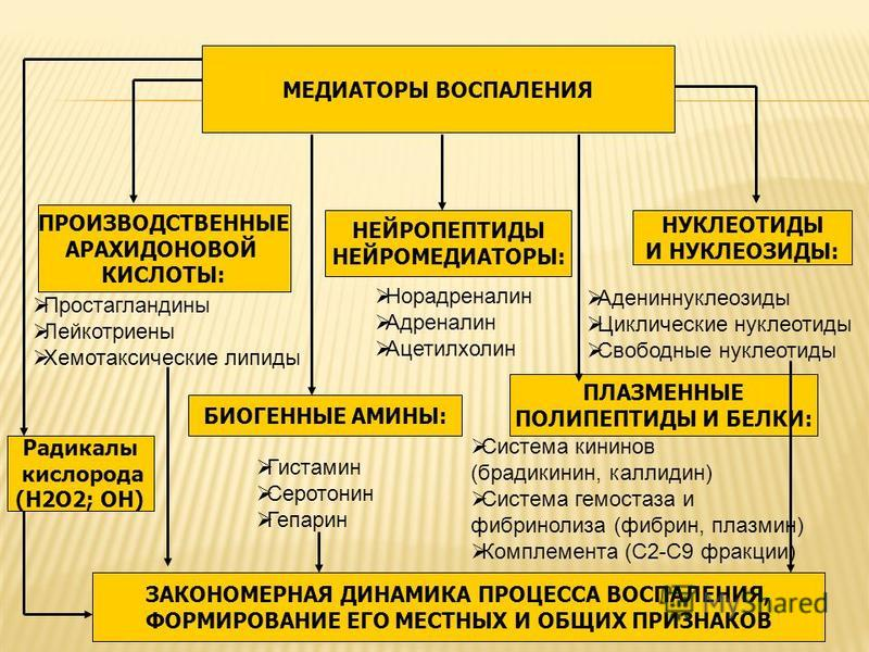 ПРОИЗВОДСТВЕННЫЕ АРАХИДОНОВОЙ КИСЛОТЫ: МЕДИАТОРЫ ВОСПАЛЕНИЯ НЕЙРОПЕПТИДЫ НЕЙРОМЕДИАТОРЫ: БИОГЕННЫЕ АМИНЫ: ПЛАЗМЕННЫЕ ПОЛИПЕПТИДЫ И БЕЛКИ: Радикалы кислорода (H2O2; OH) ЗАКОНОМЕРНАЯ ДИНАМИКА ПРОЦЕССА ВОСПАЛЕНИЯ, ФОРМИРОВАНИЕ ЕГО МЕСТНЫХ И ОБЩИХ ПРИЗНА