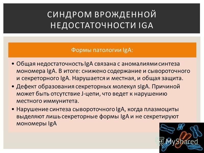 Формы патологии IgA: Общая недостаточность IgA связана с аномалиями синтеза мономера IgA. В итоге: снижено содержание и сывороточного и секреторного IgA. Нарушается и местная, и общая защита. Дефект образования секреторных молекул sIgA. Причиной може