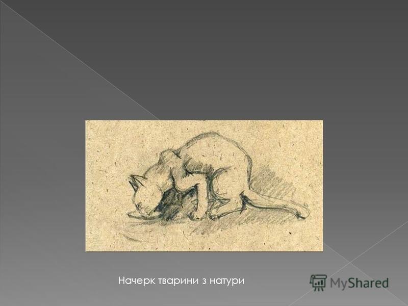 Начерк тварини з натури