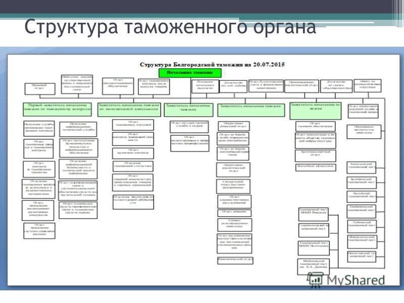 Структура таможенного органа