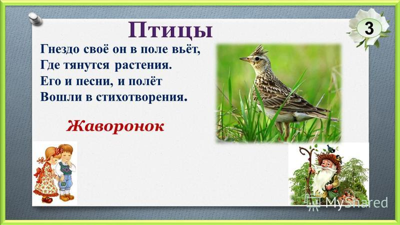 Жаворонок Гнездо своё он в поле вьёт, Где тянутся растения. Его и песни, и полёт Вошли в стихотворения. 3