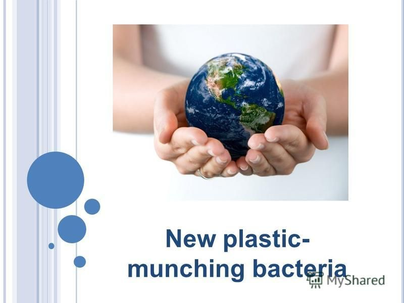 New plastic- munching bacteria
