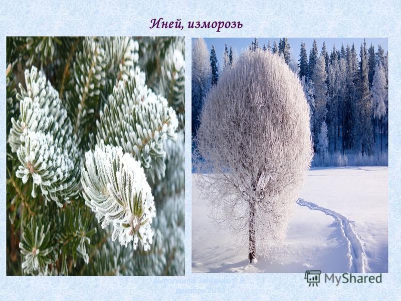 Иней, изморозь выполнила Зинченко Л.В. декабрь 2013