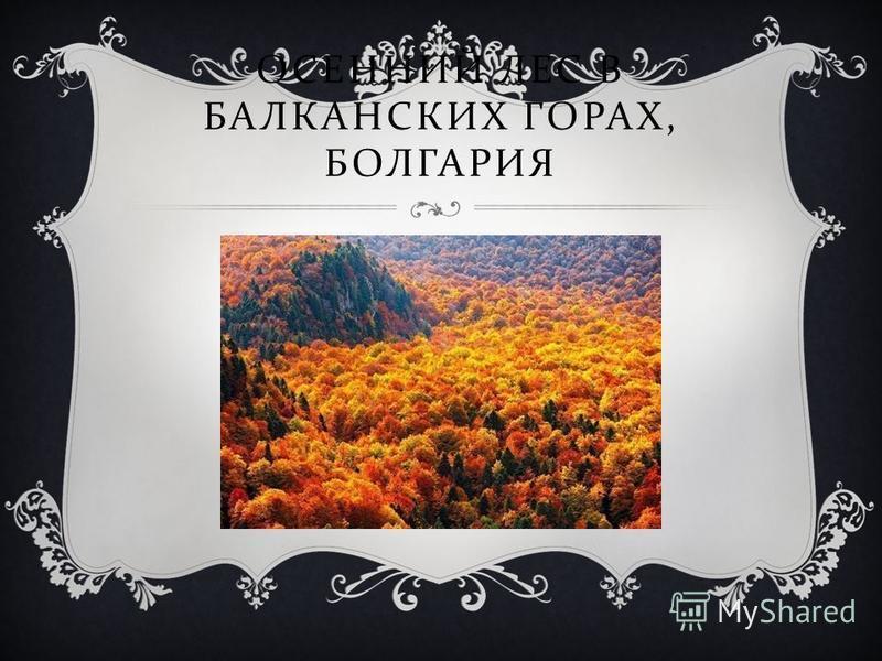 ГРЕЧЕСКАЯ УЛОЧКА НА ОСТРОВЕ ЛЕСБОС.