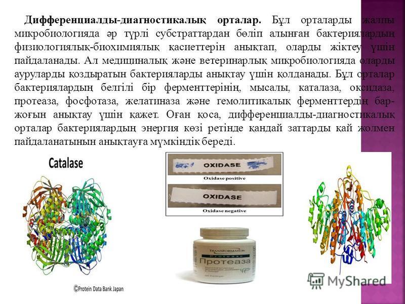 Дифференциалды-диагностикалық портала. Бұл порталады жалпы микробиология да әр түрлі субстраттардан бөліп алынған бактериялардың физиологиялық-биохимиялық қасиоттерін анықтап, оларды жіктеу үшін пайдаланады. Ал медициналық және вотеринарлық микробиол