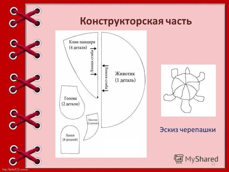 Конструкторская часть Эскиз черепашки 21