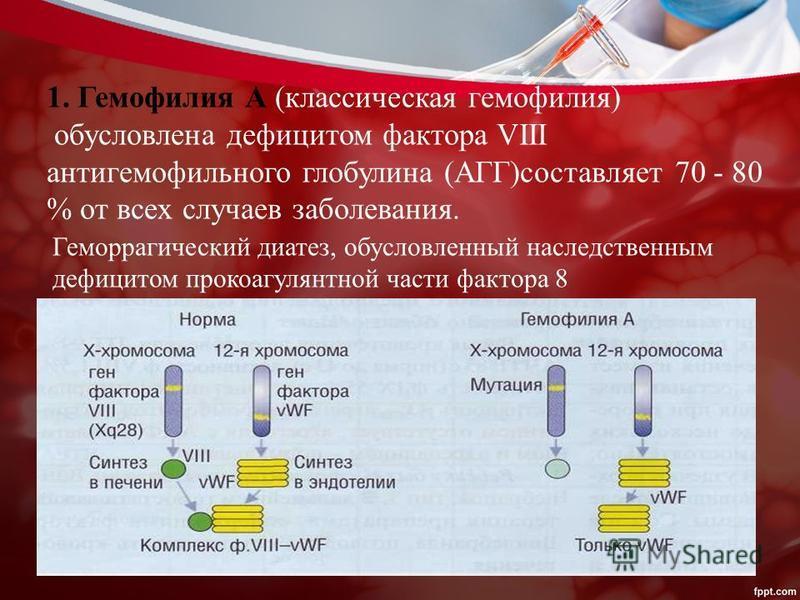 1. Гемофилия А (классическая гемофилия) обусловлена дефицитом фактора VIII антигемофильного глобулина (АГГ)составляет 70 - 80 % от всех случаев заболевания. Геморрагический диатез, обусловленный наследственным дефицитом прокоагулянтной части фактора