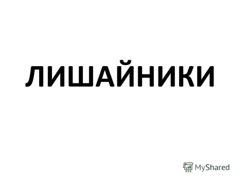 ЛИШАЙНИКИ