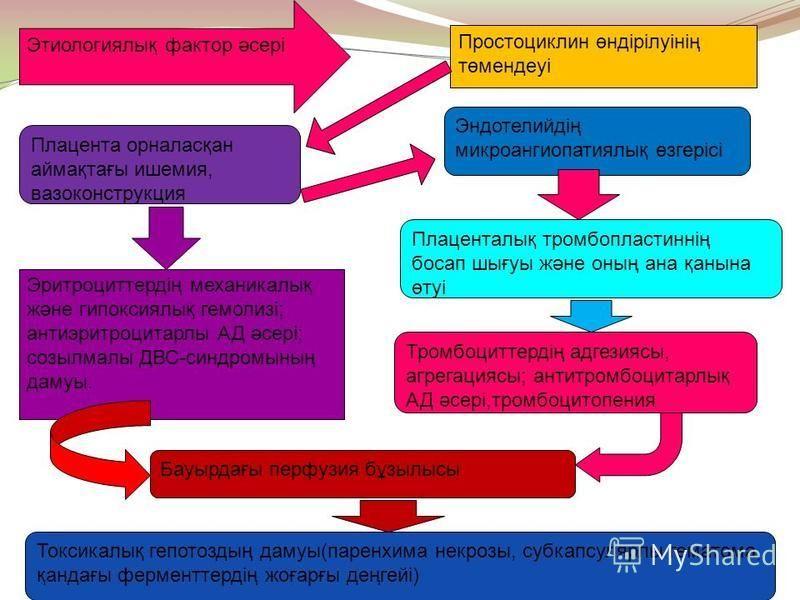 Этиологиялық фактор әсері Простоциклин өндірілуінің төмендеуі Эндотелийдің микроангиопатиялық өзгерісі Плаценталық тромбопластиннің босап шығуы және оның ана қанына өтуі Плацента орналасқан аймақтағы ишемия, вазоконструкция Эритроциттердің механикалы