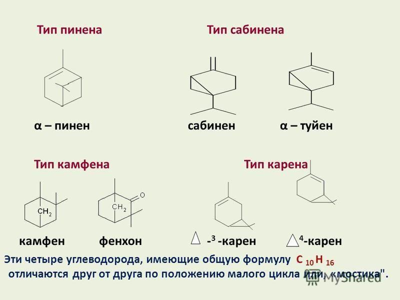 Тип пинена Тип сабинена α – пинен сабинен α – туйон Тип камфена Тип карена камфен фенхон - 3 -карен 4 -карен Эти четыре углеводорода, имеющие общую формулу С 10 Н 16 отличаются друг от друга по положению малого цикла или, «мостика.