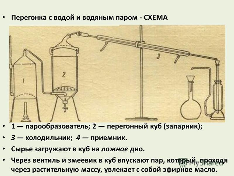 Перегонка с водой и водяным паром - СХЕМА 1 парообразователь; 2 перегонный куб (запарник); 3 холодильник; 4 приемник. Сырье загружают в куб на ложное дно. Через вентиль и змеевик в куб впускают пар, который, проходя через растительную массу, увлекает
