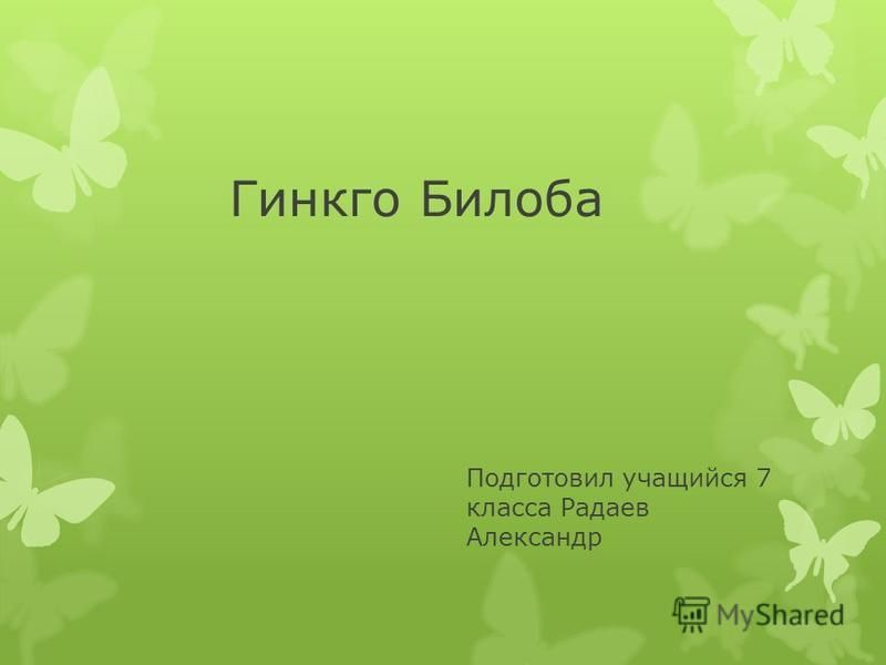 Гинкго Билоба Подготовил учащийся 7 класса Радаев Александр