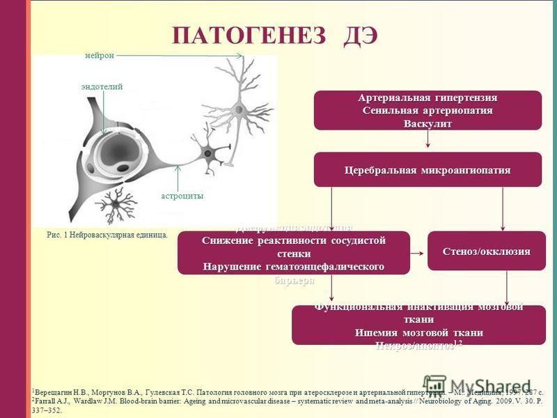 ПАТОГЕНЕЗ ДЭ 1 Верещагин Н.В., Моргунов В.А., Гулевская Т.С. Патология головного мозга при атеросклерозе и артериальной гипертонии. – М.: Медицина, 1997. 287 с. 2 Farrall A.J., Wardlaw J.M. Blood-brain barrier: Ageing and microvascular disease – syst