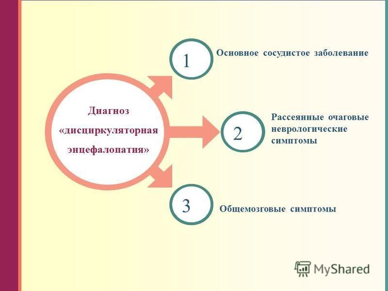 2 3 1 Диагноз «дисциркуляторная энцефалопатия» Основное сосудистое заболевание Рассеянные очаговые неврологические симптомы Общемозговые симптомы