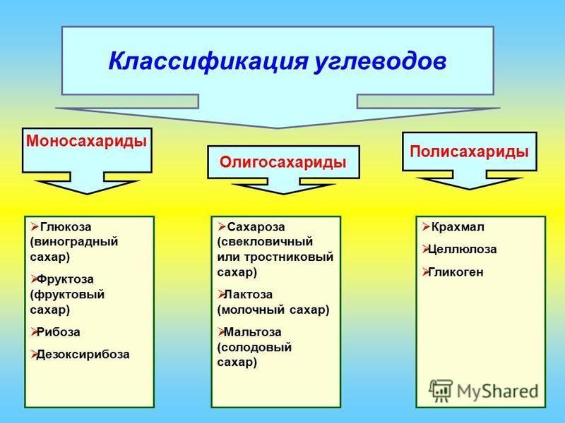 Крахмал Целлюлоза Гликоген Классификация углеводов Моносахариды Олигосахариды Полисахариды Глюкоза (виноградный сахар) Фруктоза (фруктовый сахар) Рибоза Дезоксирибоза Сахароза (свекловичный или тростниковый сахар) Лактоза (молочный сахар) Мальтоза (с