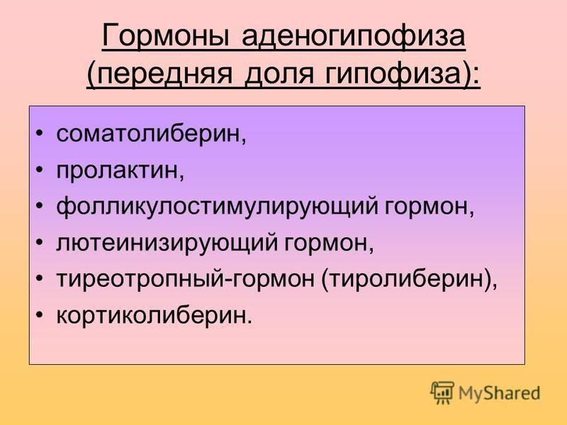 Гормоны аденогипофиза (передняя доля гипофиза): соматолиберин, пролактин, фолликулостимулирующий гормон, лютеинизирующий гормон, тиреотропный-гормон (тиролиберин), кортиколиберин.