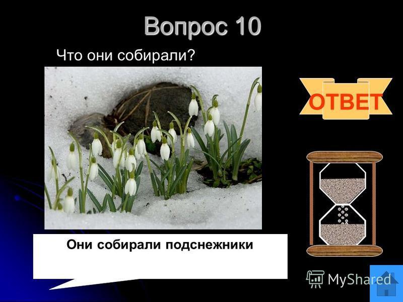 Вопрос 9 Куда ходили дети? Куда ходили дети? ОТВЕТ Дети ходили в лес