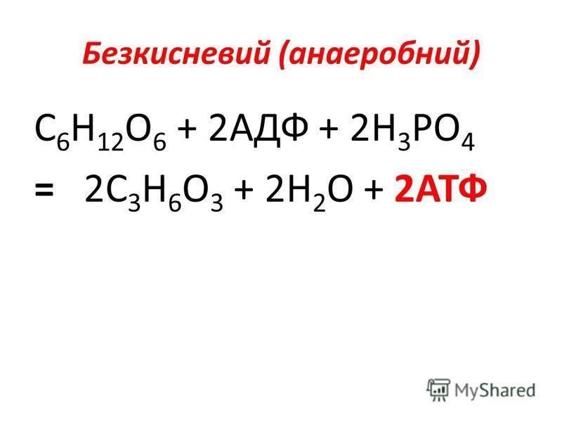 Безкисневий (анаеробний) С 6 Н 12 О 6 + 2АДФ + 2Н 3 РО 4 = 2С 3 Н 6 О 3 + 2Н 2 О + 2АТФ