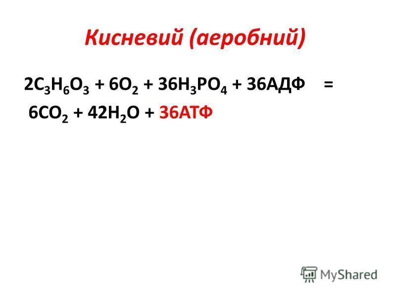Кисневий (аеробний) 2С 3 Н 6 О 3 + 6О 2 + 36Н 3 РО 4 + 36АДФ = 6СО 2 + 42Н 2 О + 36АТФ