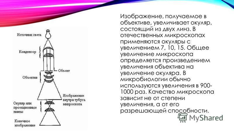 Изображение, получаемое в объективе, увеличивает окуляр, состоящий из двух линз. В отечественных микроскопах применяются окуляры с увеличением 7, 10, 15. Общее увеличение микроскопа определяется произведением увеличения объектива на увеличение окуляр
