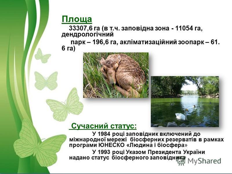 Площа 33307,6 га (в т.ч. заповідна зона - 11054 га, дендрологічний парк – 196,6 га, акліматизаційний зоопарк – 61. 6 га) Сучасний статус: У 1984 році заповідник включений до міжнародної мережі біосферних резерватів в рамках програми ЮНЕСКО «Людина і