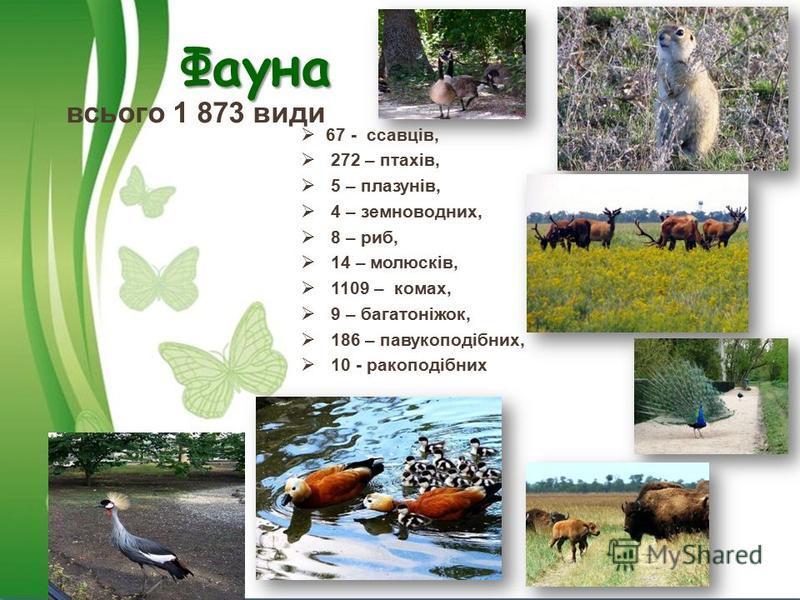 Фауна всього 1 873 види 67 - ссавців, 272 – птахів, 5 – плазунів, 4 – земноводних, 8 – риб, 14 – молюсків, 1109 – комах, 9 – багатоніжок, 186 – павукоподібних, 10 - ракоподібних
