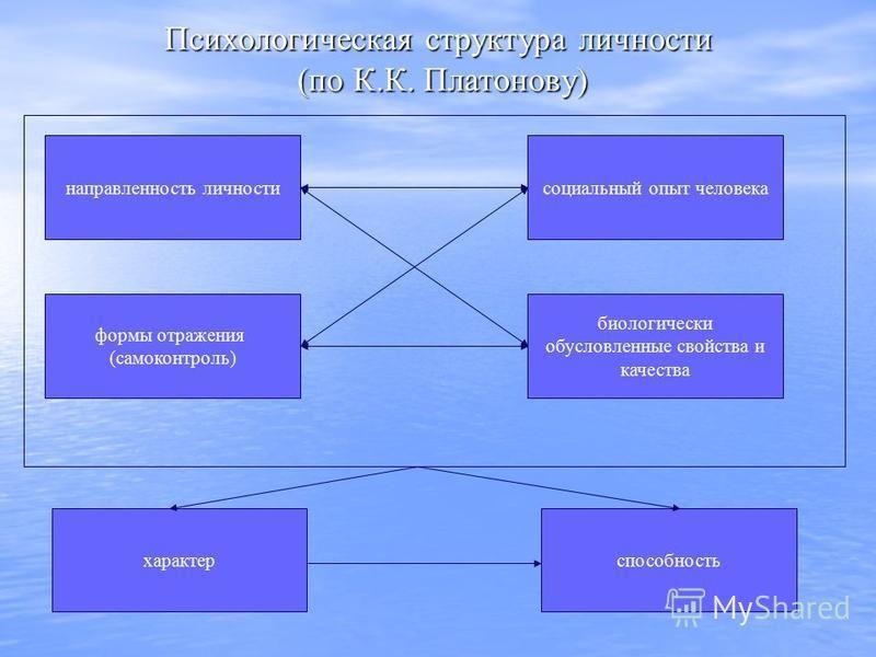 Психологическая структура личности (по К.К. Платонову) направленность личности формы отражения (самоконтроль) характер социальный опыт человека биологически обусловленные свойства и качества способность