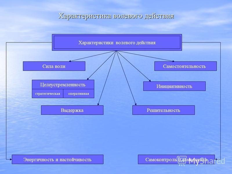 Характеристика волевого действия Характеристики волевого действия Сила воли Целеустремленность оперативнаястратегическая Выдержка Решительность Инициативность Самостоятельность Энергичность и настойчивость Самоконтроль и самооценка