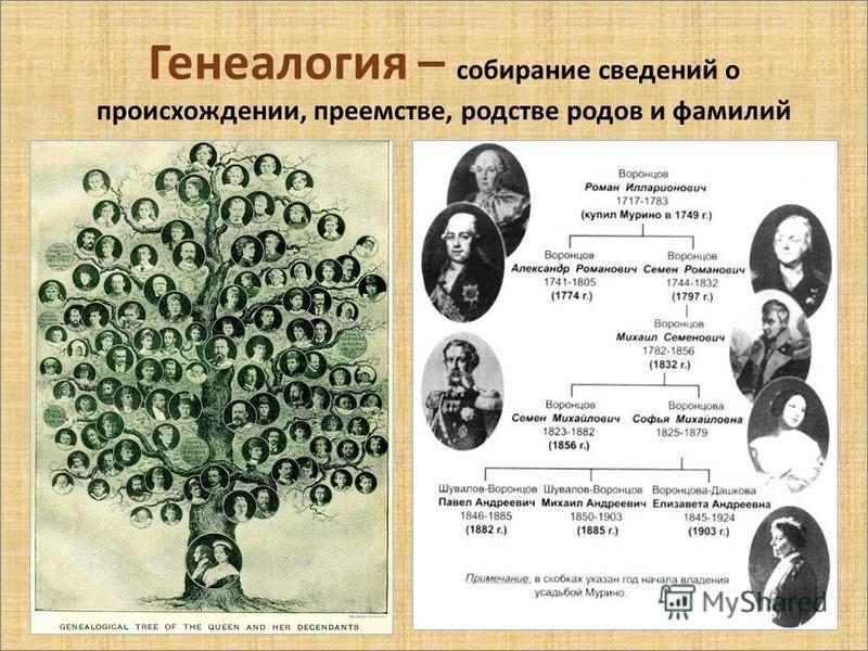 Генеалогия – собирание сведений о происхождении, преемстве, родстве родов и фамилий