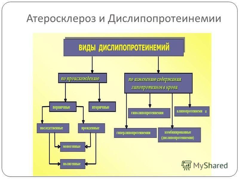 Атеросклероз и Дислипопротеинемии