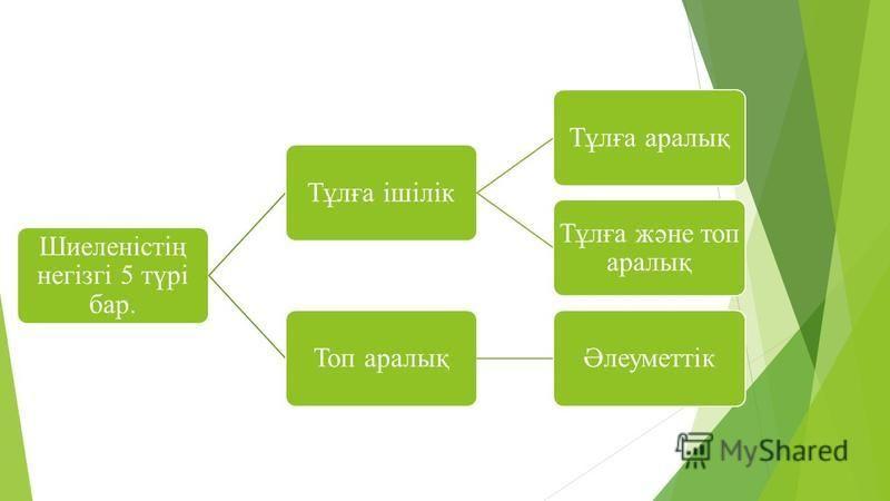 Шиеленістің негізгі 5 түрі бар. Тұлға ішілікТұлға аралық Тұлға және топ аралық Топ аралықӘлеуметтік