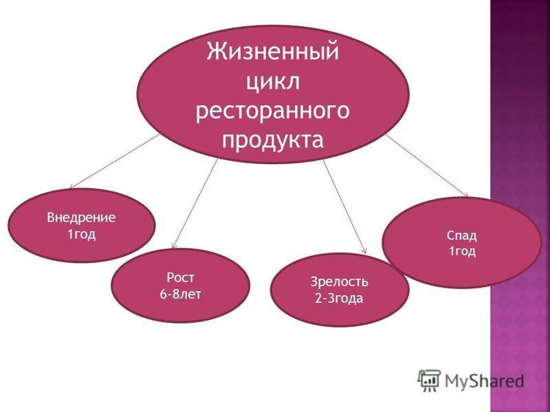 Жизненный цикл ресторанного продукта Внедрение 1 год Рост 6-8 лет Зрелость 2-3 года Спад 1 год