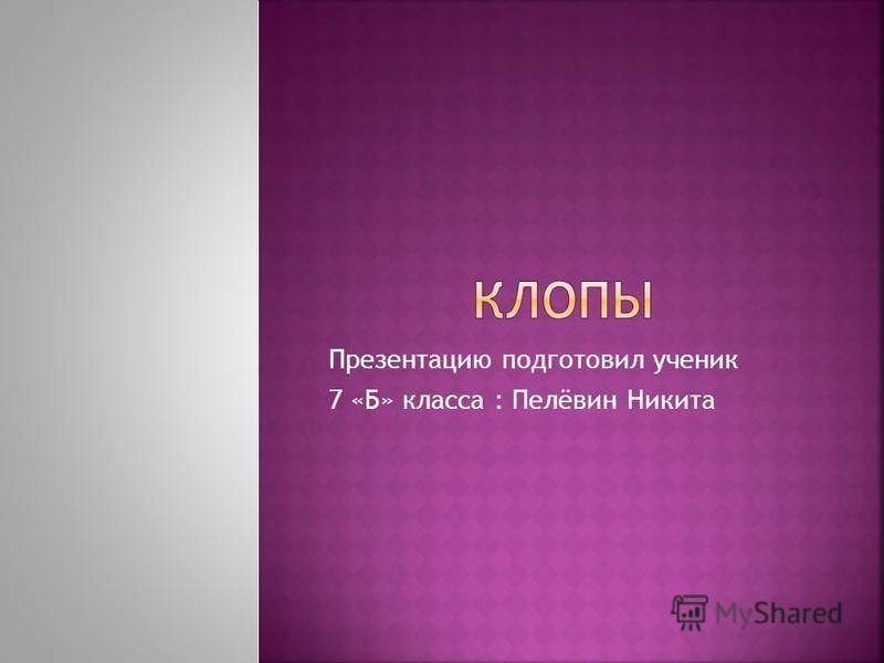 Презентацию подготовил ученик 7 «Б» класса : Пелёвин Никита