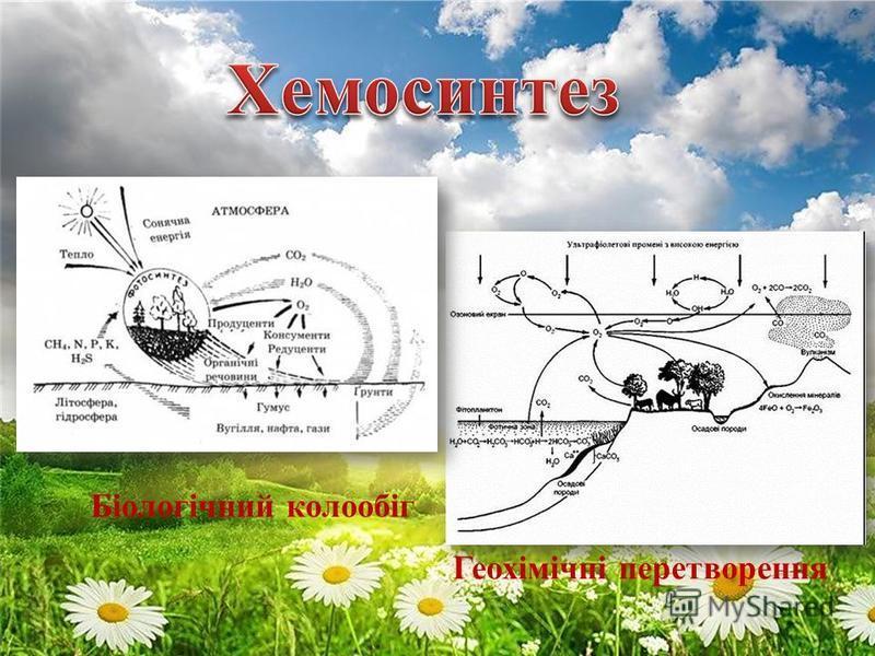 Біологічний колообіг Геохімічні перетворення