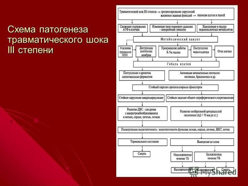 Схема патогенеза травматического шока III степени